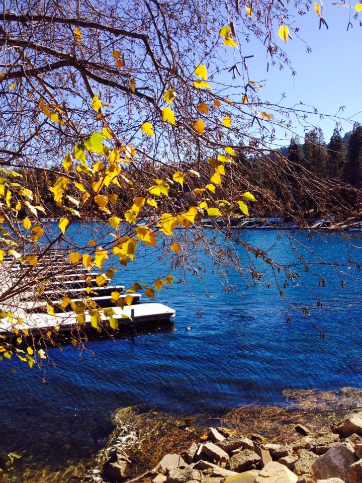Lake Arrowhead Lake Front Homes