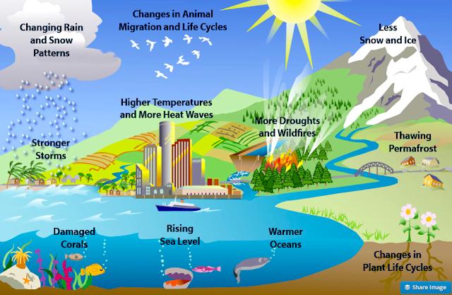 global warming 18 essay