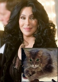 Cher, and her cat Mr Big