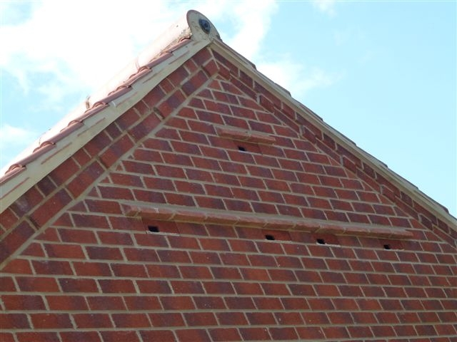 Action for swifts swift boxes in a garage gable end for Box gable roof