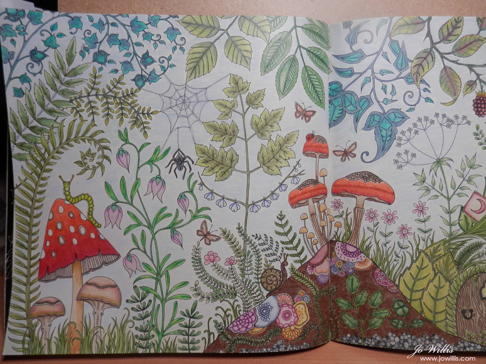 Here I Go Again Another Enchanted Forest Colouring