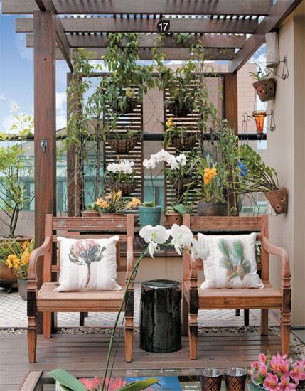 plantas jardim baratas:Ambientes para sua orquídeas: Idéias de orquidários, paredes verdes