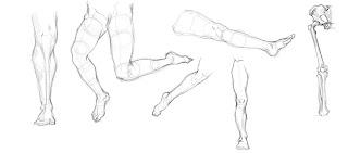 [Image: Legs%2BLoomis.jpg]