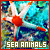 I like sea animals