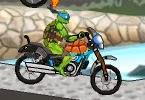 Ninja Kaplumbağa Yarışı