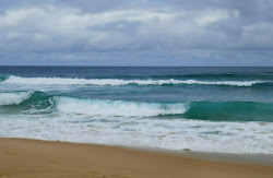 Surfing on Maroubra Beach 19.01.20
