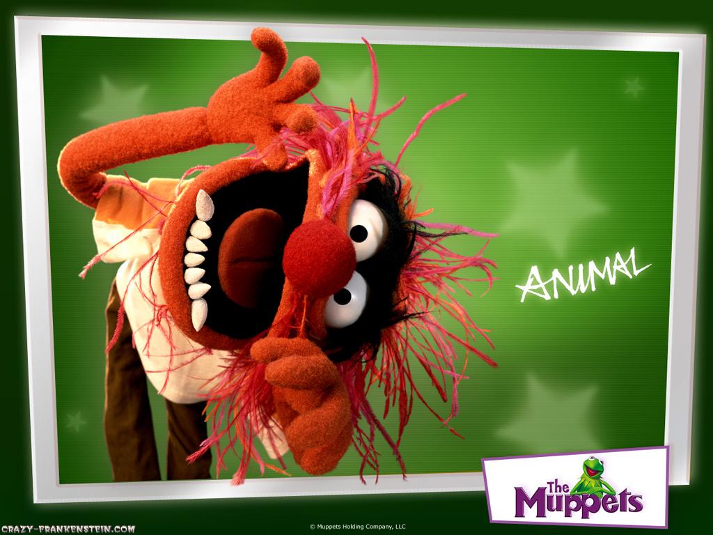 http://4.bp.blogspot.com/-sHQ35VIXNBc/T-4DWomNCLI/AAAAAAAAAPc/ynXJoXf1cZc/s1600/animal-muppets-wallpapers.jpg