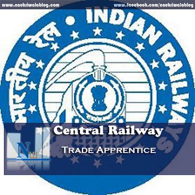 Trade Apprentice Job 2015