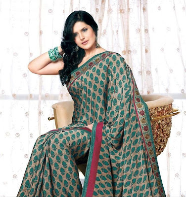 zarine khan in saree actress pics
