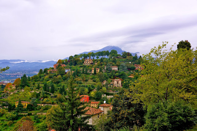Image of trees and houses on a hill near Bergamo, Italy.