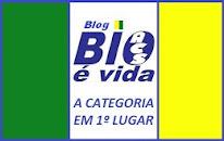 OBRIGADO PELA VISITA.