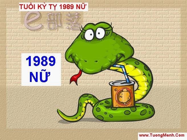 XEM TU VI TUOI KY TY 1989 NU MANG
