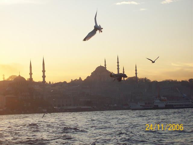 İstanbul ve Martı