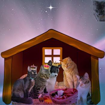 Um feliz Natal a todos, com muito amor, paz e alegria!!!