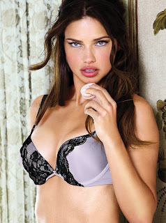Adriana Lima for VS Lingeie August 2013-201.jpg