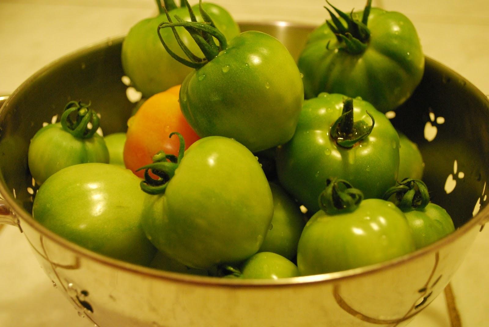 Квашеные зеленые помидоры: простые рецепты в домашних 81