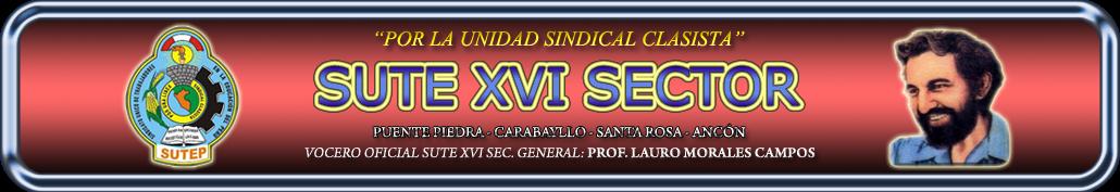 SUTE XVI SECTOR