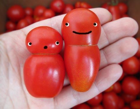 tomato faces