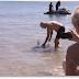 Video: Turista británico lucha contra un tiburón.