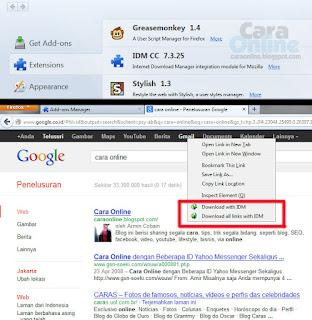 Cara-update-firefox-IDM