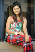 Neha deshpande Photos at Dil Diwana press meet-thumbnail-5