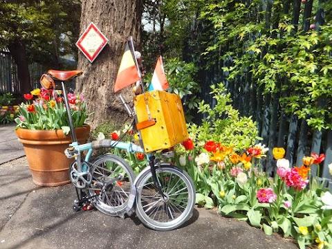 Tour De Holland to Flanders, Belgium in Tokyo
