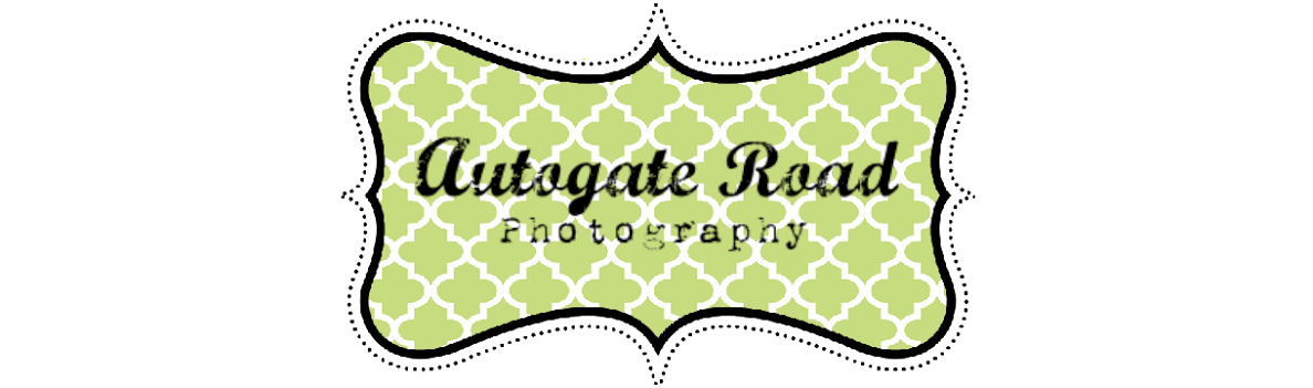 Autogate Road Photography