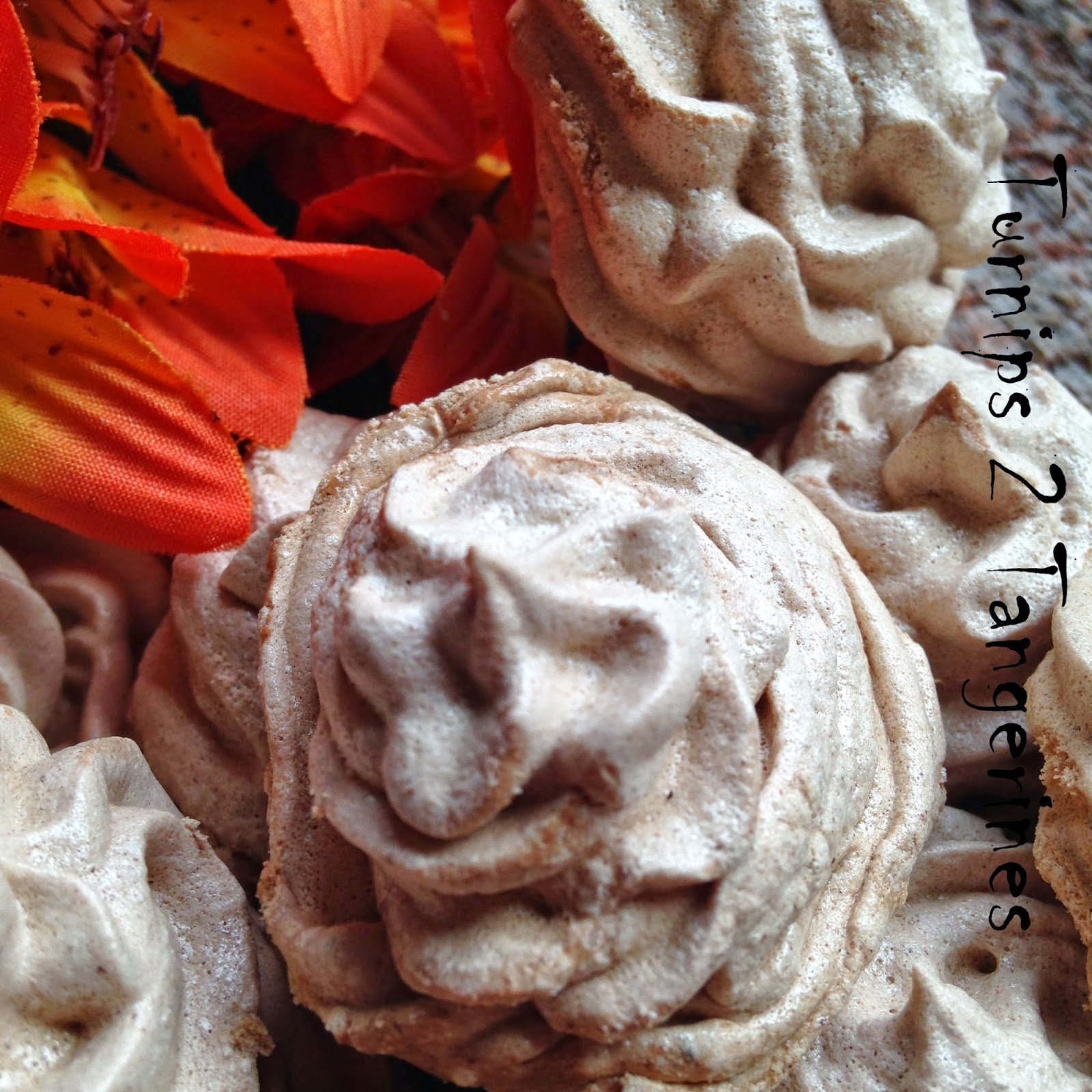 Featured Recipe | Spice Cocoa Meringues from Turnips 2 Tangerines #SecretRecipeClub #recipe