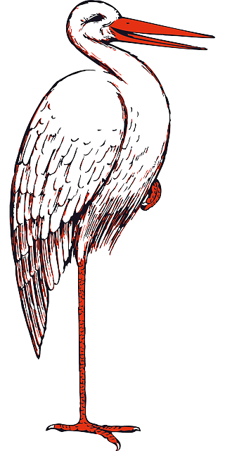 significado carta cegonha lenormand