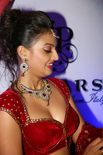 Actress Nikitha Narayan Latest  Pictures in Designer Dress at Fashionology Fashion Show 2013 0030.jpg