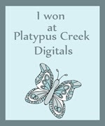 I won at Platypus Creek Digitals!