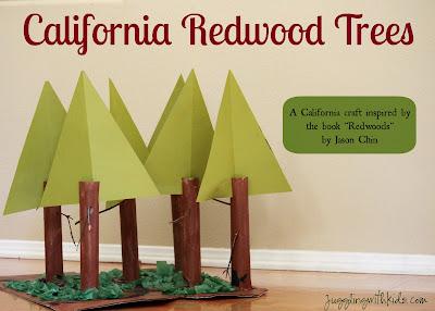Redwood Forest Kids Activities