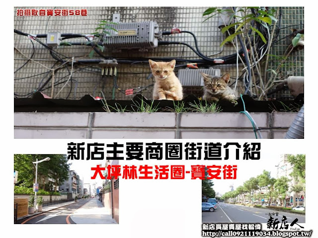 大坪林商圈介紹(1)-寶安街