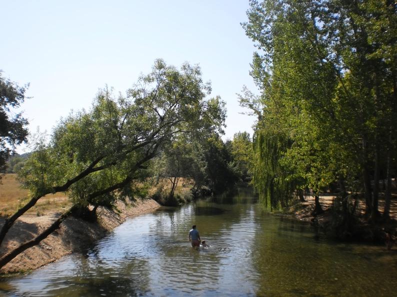 Passear na água pouco profunda da praia fluvial