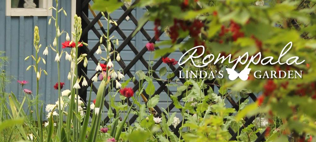 Romppala - Lindan pihalla