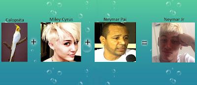 Calopsita, Miley Cyrus, Neymar