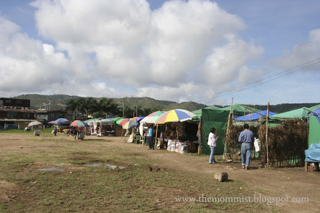 Stalls selling strawberry products