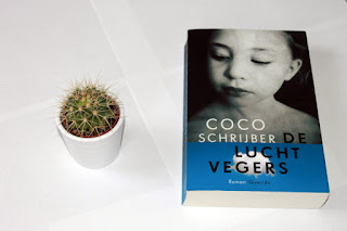dit is een recensie over het boek De luchtvegers van Coco Schrijber
