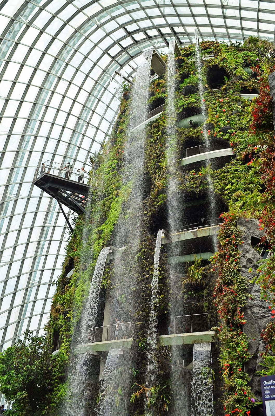 Garden By The Bay Cloud Forest trip to gardensthe bay, singapore: cloud forest | just an