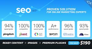 SEOHub is modern, flexible and customisable WordPress theme