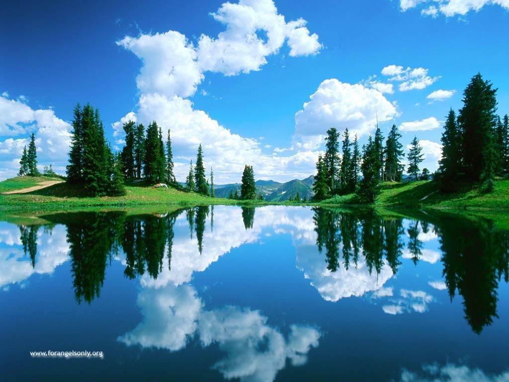 nature background wallpaper - photo #6