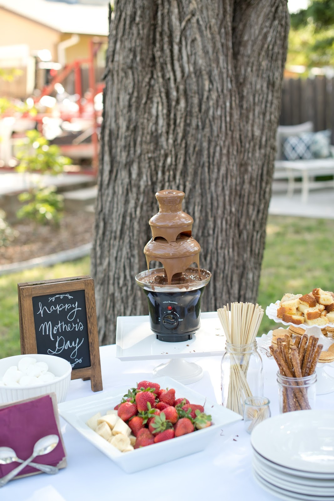 domestic fashionista backyard dinner party and chocolate fountain bar