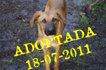 KIka Adpotada