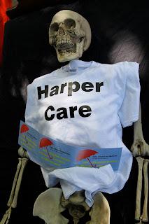 OFL, skeleton, Niagara on the lake