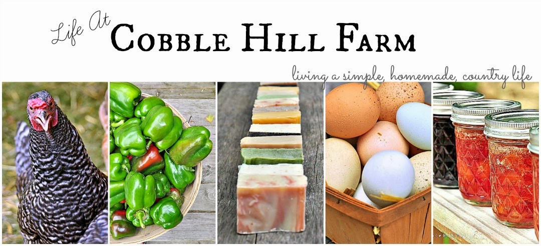 Life At Cobble Hill Farm