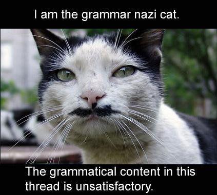 [Image: grammar+nazi+cat.jpg]