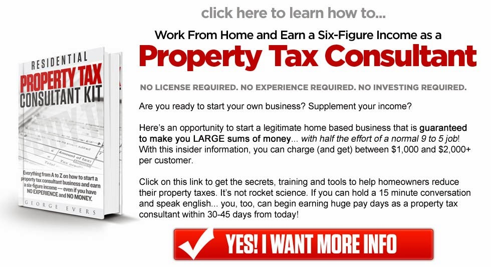 Property Tax Consultant