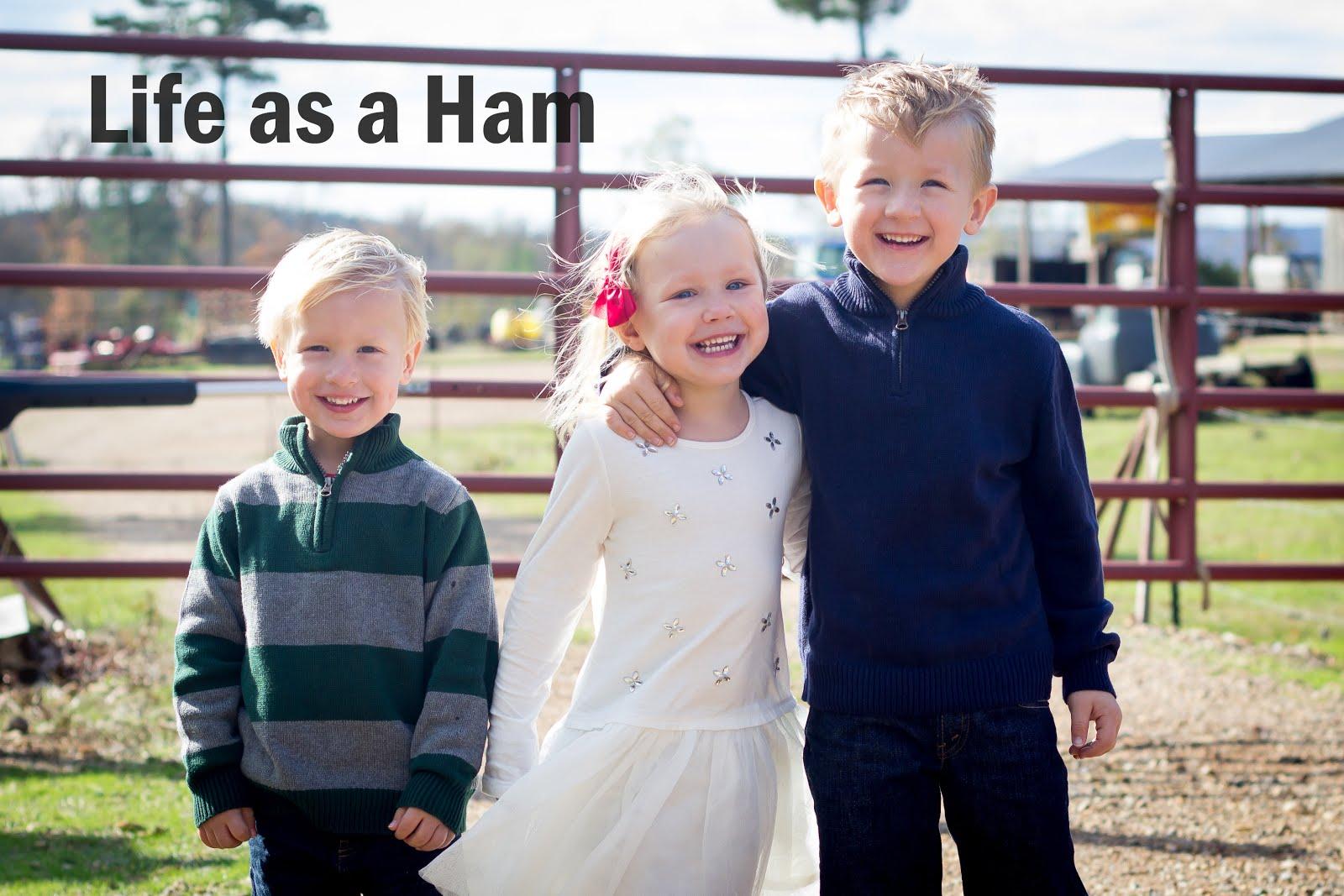 Life as a Ham