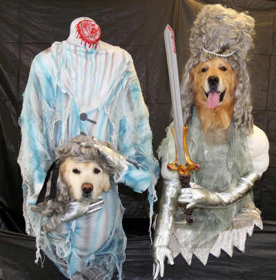 Ghost pet costumes 1
