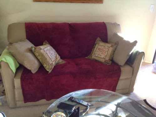 Craigslist Couch